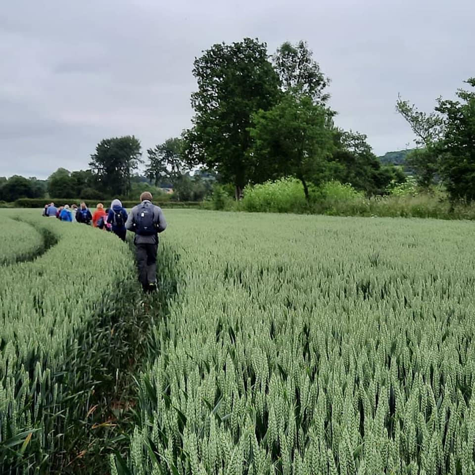 Herefordshire Walking Festival 2