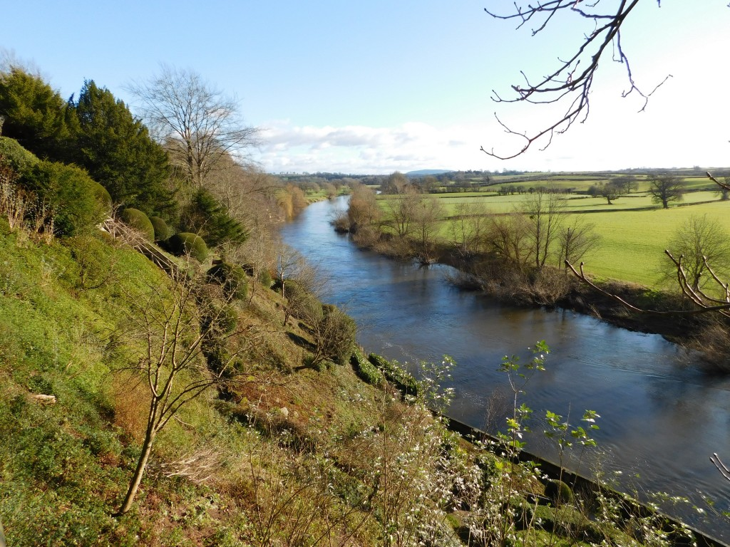 A picture of the river Wye at The Weir Garden