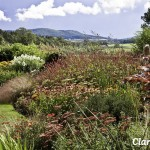 Photo showing Clarkesfield - garden open for Herefordshire Opens Gardens