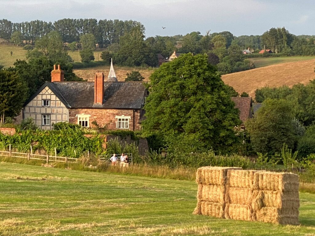 Frome Valley Vineyard