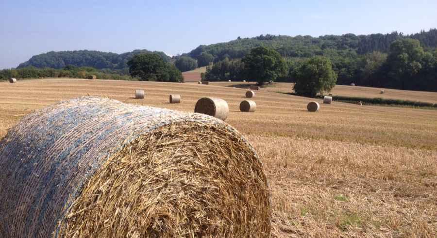Visit Herefordshire