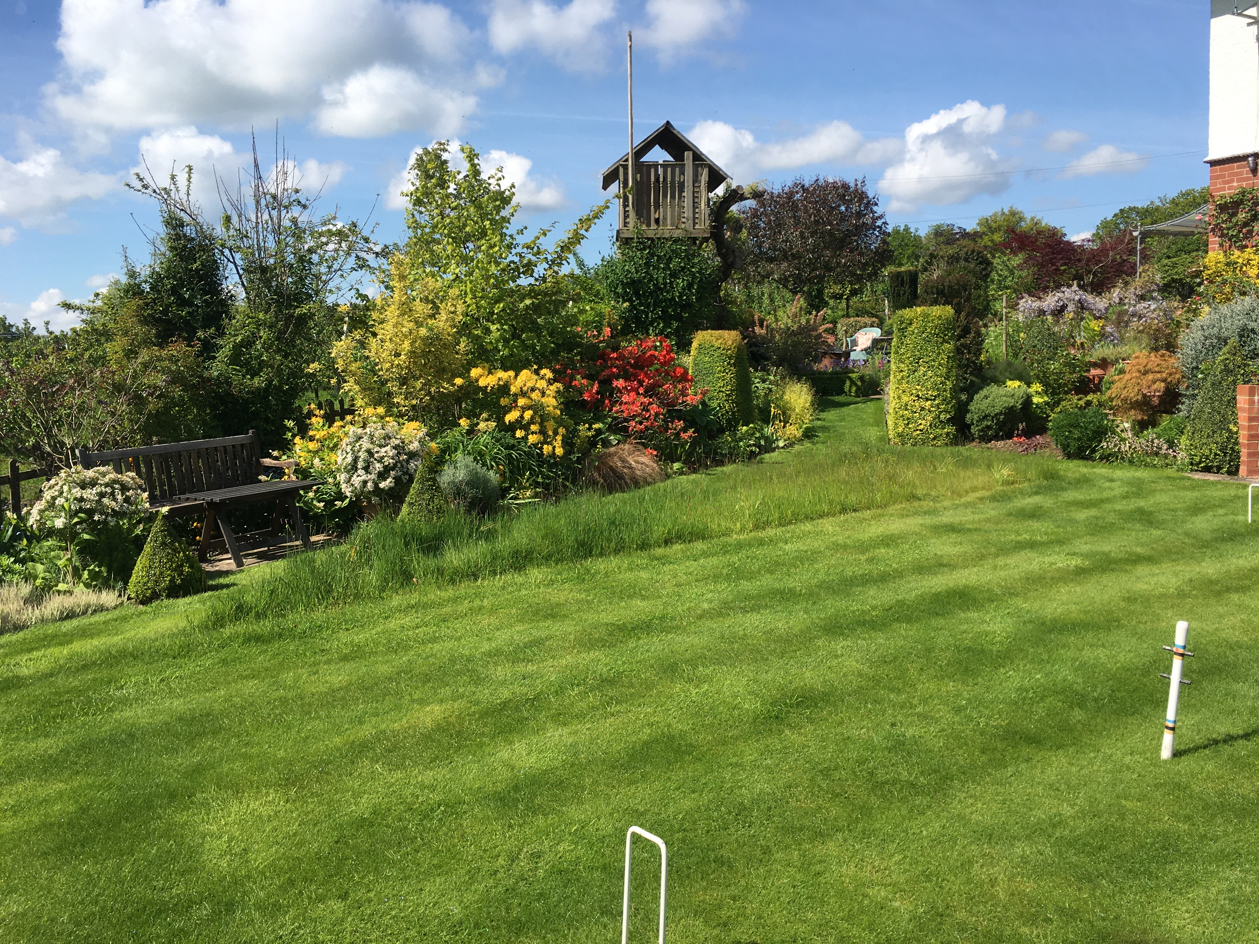 Putley Open Gardens - Large lawn and flowers