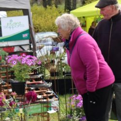 Red Cross Great Spring Garden Events Celebrates 20 Years