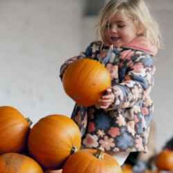 Create lasting memories this October half-term with the National Trust in Herefordshire