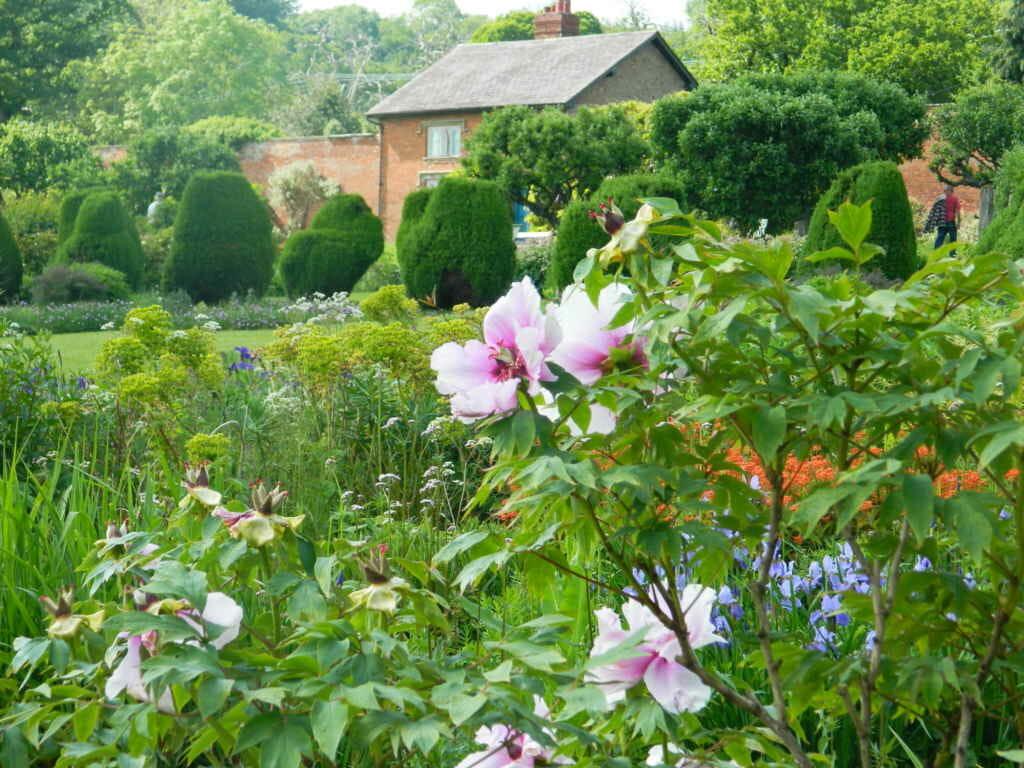 National Trust Glorious Gardens