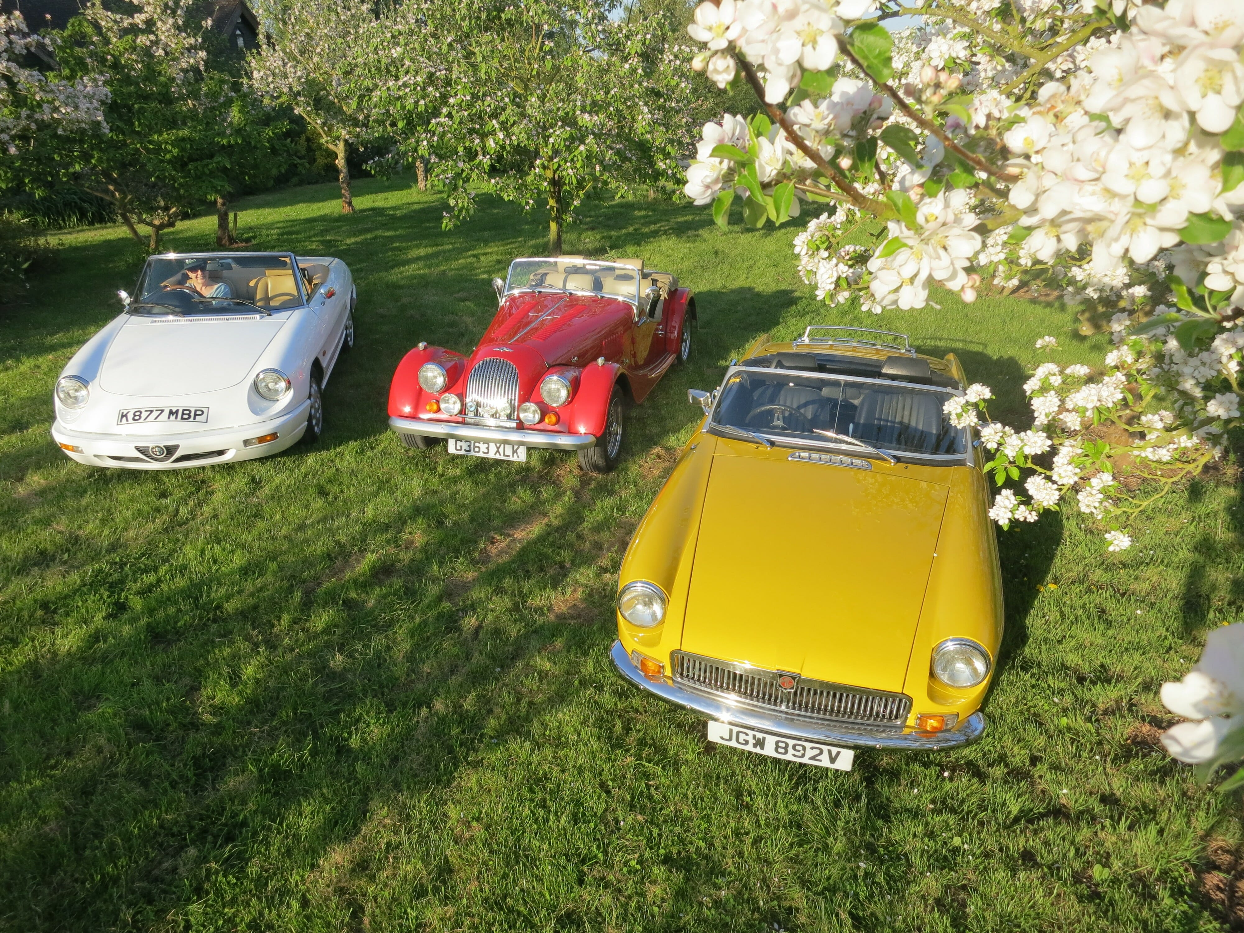 Orchard Classic Car Hire