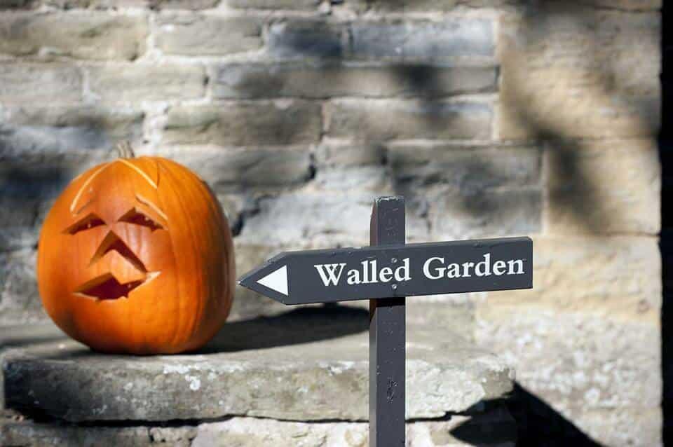 halloween at croft castle eat sleep live herefordshire. Black Bedroom Furniture Sets. Home Design Ideas