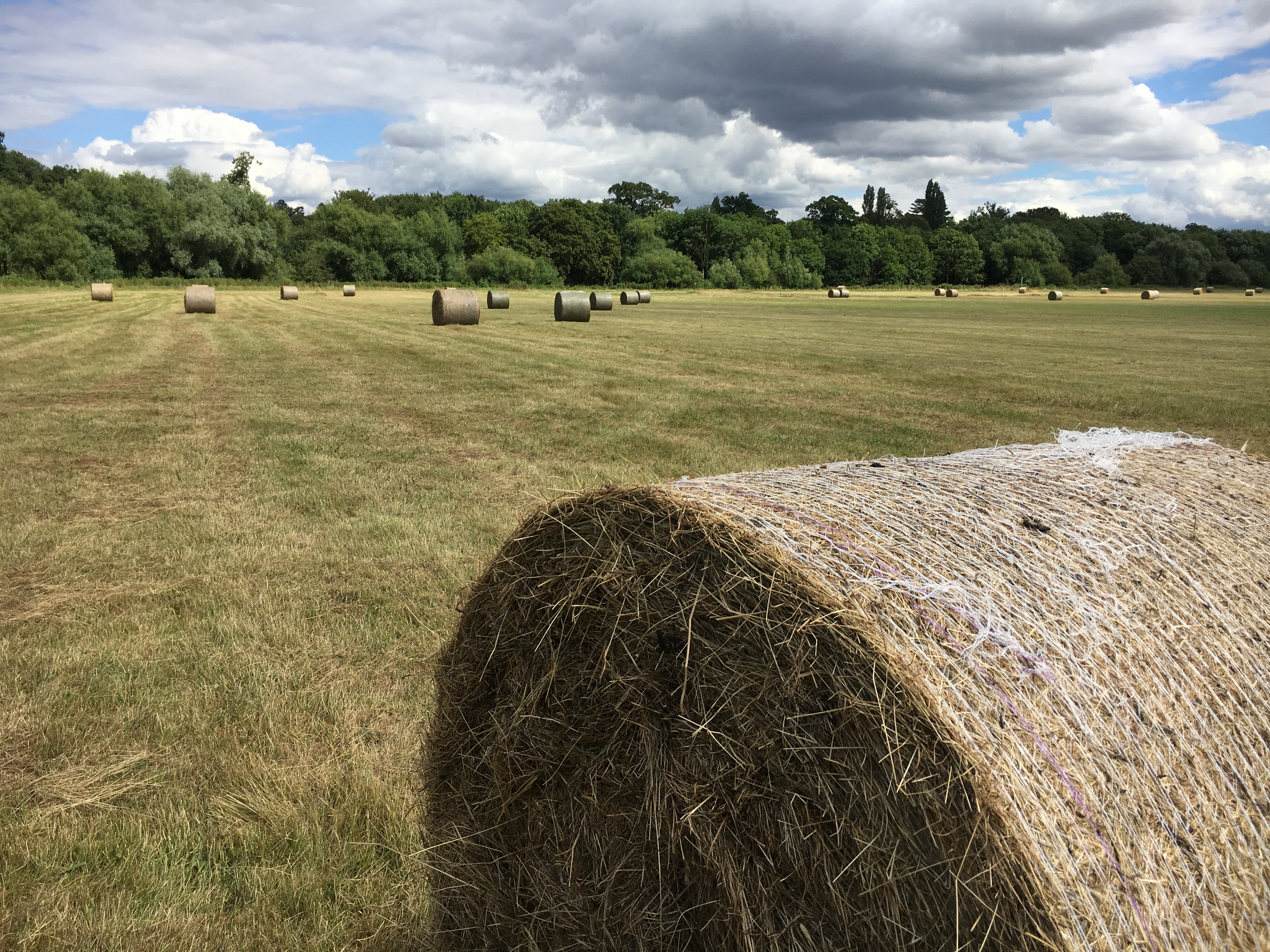 Herefordshire Hay Bales