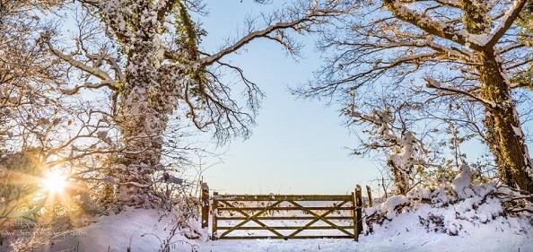 Herefordshire Winter Walks