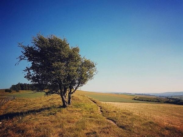 Offa's Dyke Walk