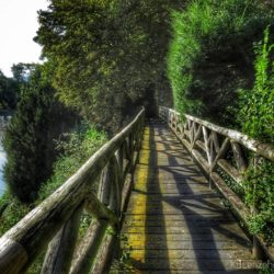 NT Weir Garden