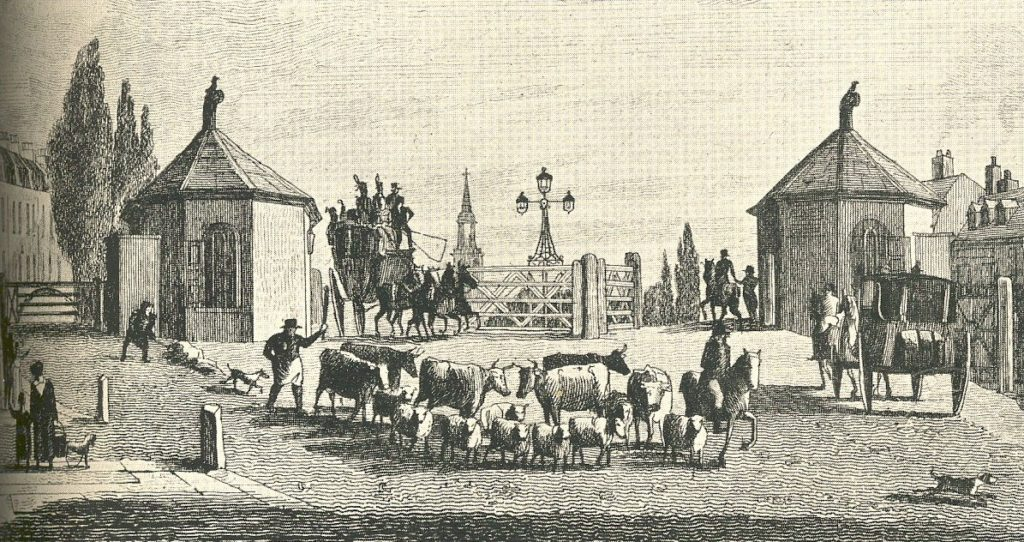 The Turnpike Revolt