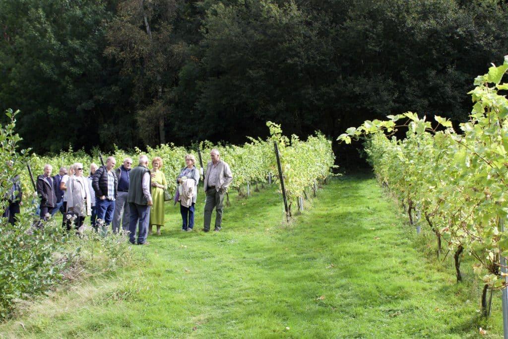 Wythall Estate Vineyard Tours