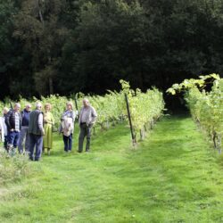 Wythall Estate Wine Tours