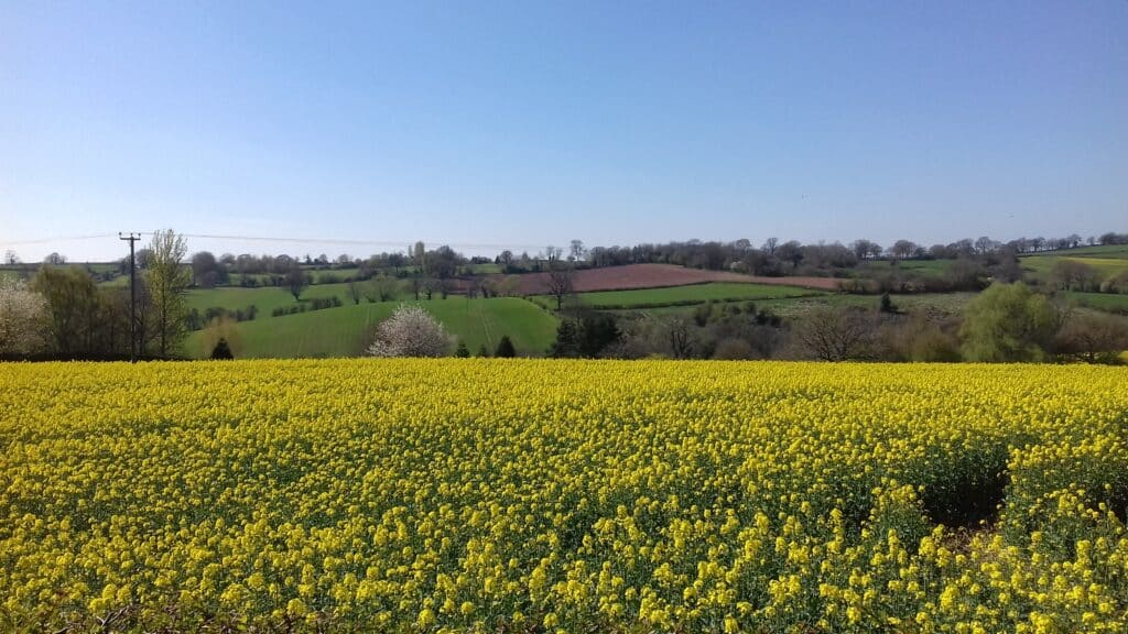 Taste Herefordshire