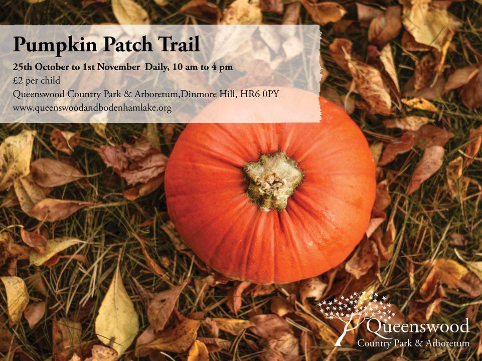 Queenswood Pumpkin Trail