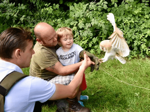 Wye Valley Falconry Family