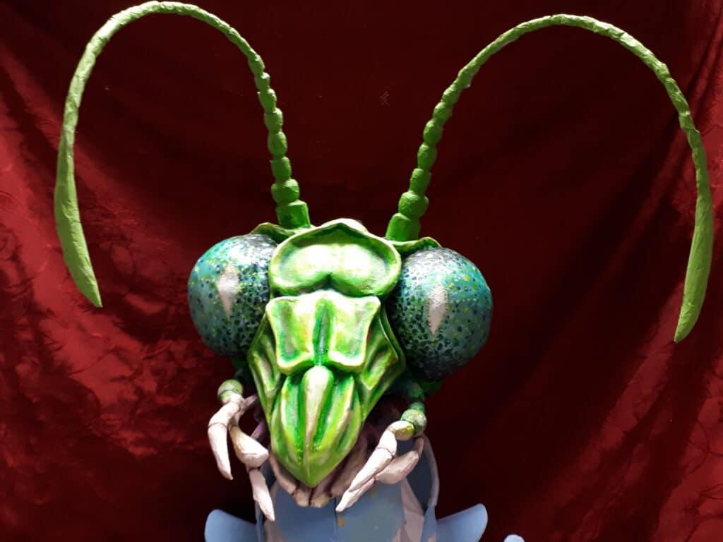 Insect Safari at Ludlow Fringe
