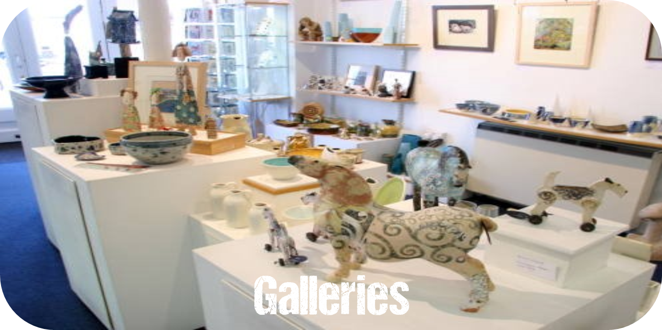 Herefordshire galleries lion gallery leominster