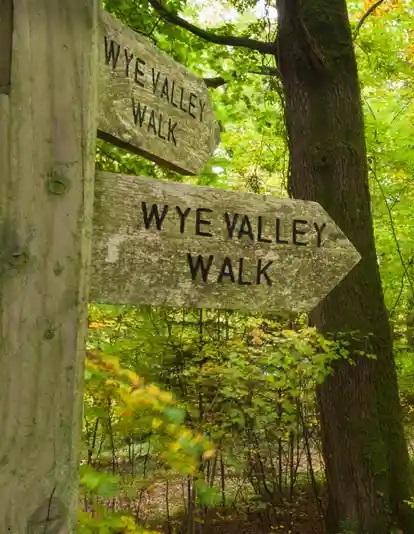 wye valley walk cropped