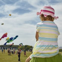 Leominster/Hereford Kite Festival