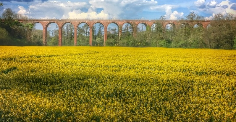 Ultimate Herefordshire Guide Ledbury Viaduct